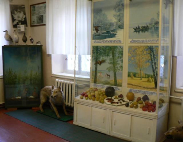 Більше уваги Сосницькому краєзнавчому музею-Дітищу Юрія Виноградського (_7.JPG)